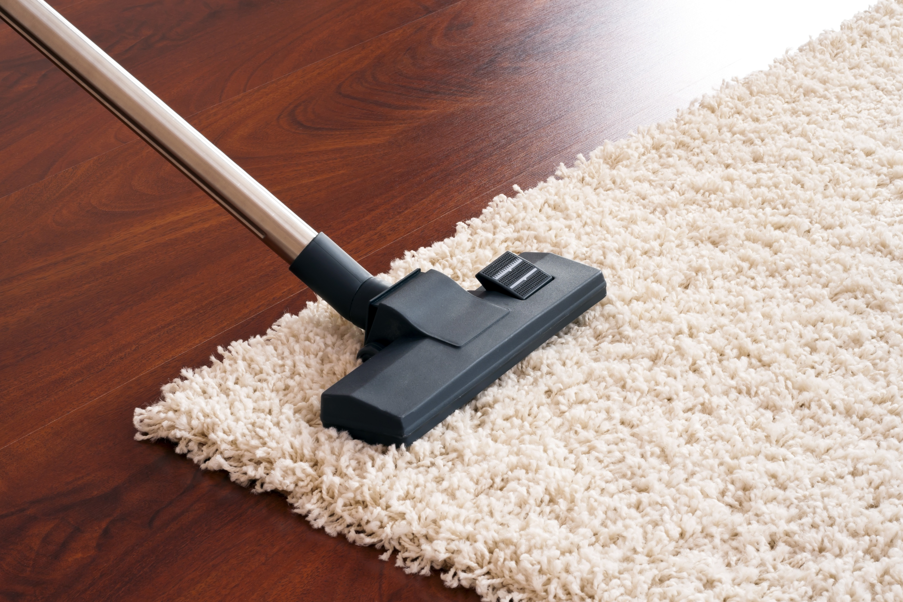 carpet-cleaning-best-2